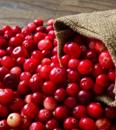the-health-benefits-of-cranberries-by-greenblender-bag
